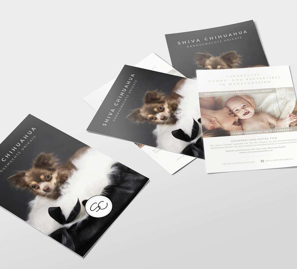 True-Creative-Agency-Grafikdesign-Shiva-Chihuahua