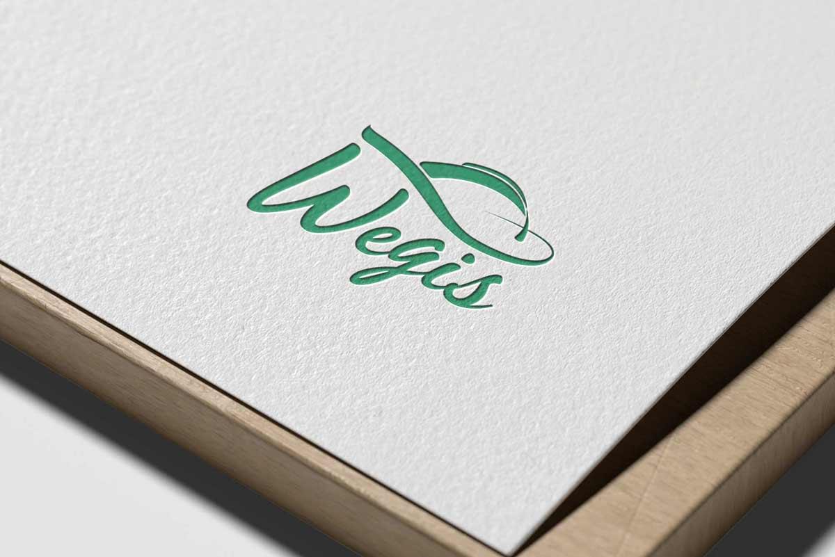 Logo Design, Firmenlogo, Logo-Design Wien, Logo Design Wien, Logo erstellen lassen, Logo Inspiration, Logo Orthopädie, Wegis
